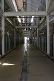 Dentro do corredor de um abrigo animal que mostra gaiolas Fotografia de Stock Royalty Free