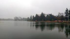 Dentro do lago Fotos de Stock
