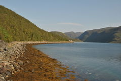Dentro dos fiordes de Noruega Fotos de Stock Royalty Free