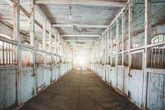Dentro la vecchia stalla o granaio di legno con la vista delle scatole di cavallo, del tunnel o del corridoio con luce alla fine fotografia stock libera da diritti