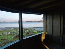Dentro una torre di sorveglianza birding fotografia stock libera da diritti