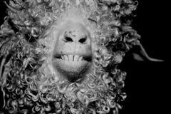 dents Image libre de droits