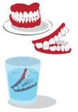 dents Photos libres de droits