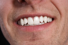 Dents blanches Images stock