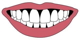Dents de blanc de sourire de Hollywood Photographie stock