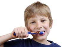 Dents de brossage Photo libre de droits