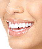 Dents de femme Photos stock