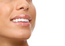 Dents de femme image stock