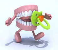Denture cartoon with arms, legs and baby pacifier Royalty Free Stock Photography