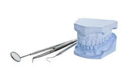 Denture cast model, dental tools set Royalty Free Stock Photography