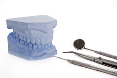 Denture cast model, dental tools set Stock Photography