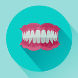 Denture with clipping path on white background.Flat Style Icon with Long Shadow. Royalty Free Stock Image