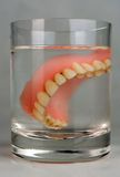 Denture limb. Stomatological article -denture limb in the glass of water at night royalty free stock images