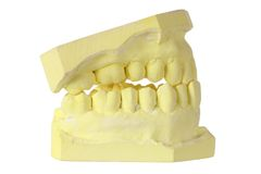 Denture Mold Stock Photography