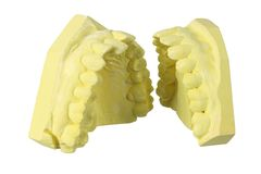 Denture Molds Royalty Free Stock Image