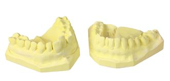 Denture Moulds Royalty Free Stock Photos