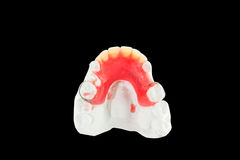 Denture wax model Royalty Free Stock Photo