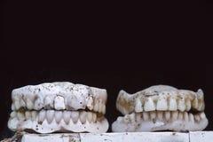 Dentures хранят, Катманду, Непал стоковое фото