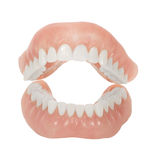 Dentures Royalty Free Stock Image