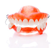 Dentures royalty free stock photo