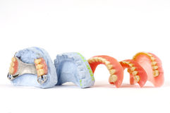 Dentures 2 Fotografia Stock
