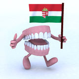 Dentures with arms and legs carrying a hungarian flag Royalty Free Stock Image