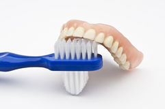 Dentures with brush Stock Photo