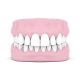 Dentures Stock Photo