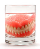 Dentures in the glass Royalty Free Stock Photos