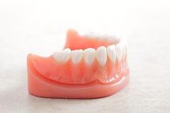 Dentures Stock Photos