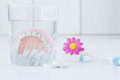 Dentures lying in a clear glass of water. Royalty Free Stock Photos