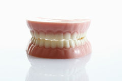 Dentures made of sugar and white chocolate on white background Royalty Free Stock Images