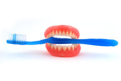 Dentures and toothbrush Stock Photos