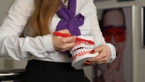 Dentysty seans dlaczego szczotkować zęby zbiory wideo