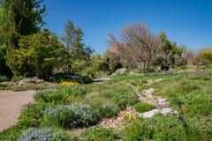 Denver Botanic Gardens bonito imagem de stock