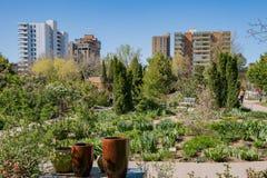 Denver Botanic Gardens bonito imagens de stock royalty free
