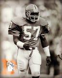 Denver Broncos-legende Tom Jackson Stock Fotografie