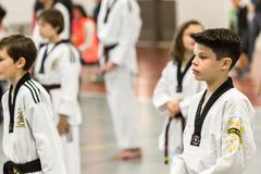 Tae Kwon Do Royalty Free Stock Images