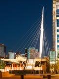 Denver Millennium Bridge Royalty Free Stock Images