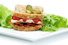 Free Denver Sandwich Stock Photo - 10827540