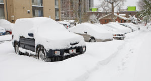 Denver snowstorm, october 29, 2009 Royalty Free Stock Photography