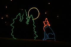 Denver Zoo Lights - Coyote Royalty Free Stock Image