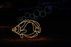 Denver Zoo Lights - Fish Stock Photo