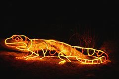 Denver Zoo Lights - Lizard Stock Photos