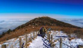 Deogyusan山和雾在冬天 免版税库存图片