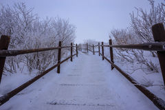 Deogyusan山由雪盖 免版税库存图片
