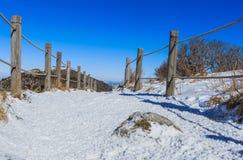 Deogyusan山由雪盖 库存图片