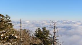 Deogyusan berg och dimma i vinter Fotografering för Bildbyråer