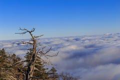 Deogyusan-Berge Lizenzfreies Stockbild