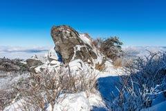 Deogyusan-Berge wird durch Morgennebel im Winter, Korea bedeckt Lizenzfreie Stockbilder